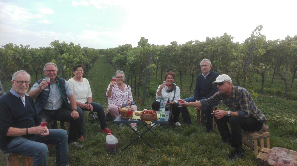 Weinfreunde bei der Weinbergsafari