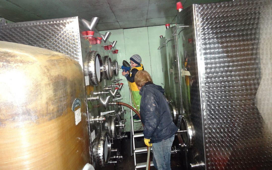 Fässer putzen während der Weinfiltration